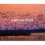 【预订】A Million Wings: A Spirited Story of the Sporting