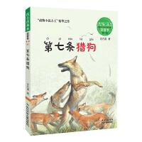 沈石溪画本・注音书系列(第一辑)――第七条猎狗