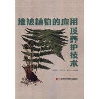地被植物的应用及养护技术 杨青菊,张红英,靳凤玲 著 9787557857721 吉林科学技术出版社【直发】 达额立减