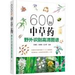 600种中草药野外识别高清图谱 刘春生,张丽霞,白贞芳 9787122299727 化学工业出版社