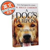 A Dog's Purpose: A Novel for Humans 一条狗的使命【英文原版 为了与你相遇同名电影原著小说、电影封面版】