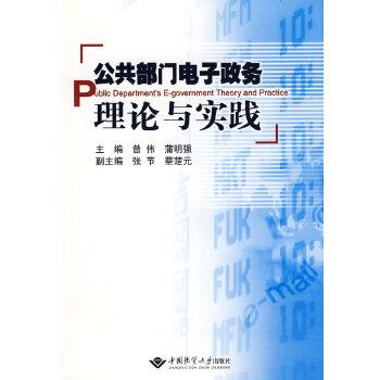 公共部门电子政务理论与实践