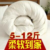 九孔纤维被加厚保暖被子冬被全棉被芯春秋被冬天双人棉被