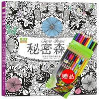 中文版涂色书系列减压手绘涂色书秘密森林正版 少儿童青少年成人创意涂鸦填色图书籍 韩国艺术绘画本秘密花园魔法森林奇幻梦境