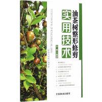 【正版全新直发】油茶树整形修剪实用技术 孙勇著 9787503878565 中国林业出版社