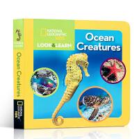 英文原版绘本 National Geographic Kids Look and Learn OceanCreatur