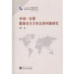 中国-东盟能源安全合作法律问题研究