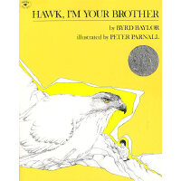 Hawk, I'm Your Brother 我是鹰的兄弟 (凯迪克银奖绘本) 9780689711022