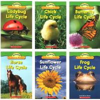 英文绘本Science Vocabulary Readers L1:Life Cycles horse butterfl