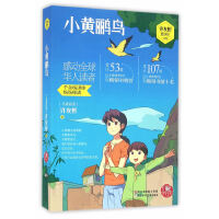 红蜻蜓暖爱长篇小说:小黄鹂鸟