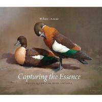【预订】Capturing the Essence: Techniques for Bird Artists