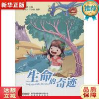 少年科学院书库第二辑――生命的奇迹 王敬东 9787533677565 安徽教育出版社