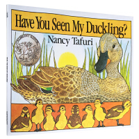 凯迪克银奖 英文原版 Have you seen my duckling 你看到我的小鸭了吗? 大开平装 亲子早教绘本