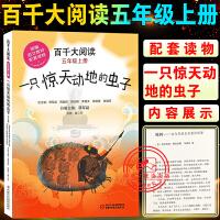 百千大阅读五年级上册一只惊天动地的虫子语文教材配套读物儿童文学小说故事书小学生课外阅读书籍