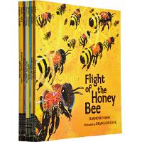 英文原版绘本 Walker Nature Story Books Set 1 自然故事书 科普百科绘本10册