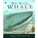 英文原版绘本 Big Blue Whale 小学STEM百科科普图画书 Walker Nature Story