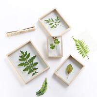 双面玻璃植物标本框树叶夹578 10寸相框摆台个性diy相框画框