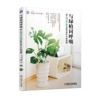 与绿植同呼吸:超人气观叶植物新手养护不败指南
