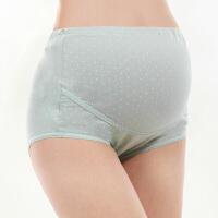 怀孕期大码内衣三角裤裤头孕妇内裤托腹高腰可调节打底短裤