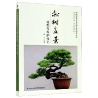 松树盆景造型与养护技艺