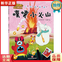 噗噗小火山:奇奇怪怪 儿童好性格培养漫画书 灌木互娱 9787545536836 天地出版社