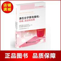 沸石分子筛与催化合成反应和应用 伊里尔扎卡,艾弗里诺科玛,斯塔赛佐内斯 著 中国石化出版社