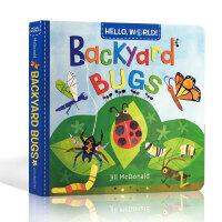 英文原版 Hello World Backyard Bugs 你好世界系列 幼儿科普百科 启蒙儿童早教 纸板书 科学自