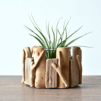 多肉花盆景观摆件创意花器空气凤梨盆栽装饰