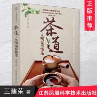 茶道:从喝茶到懂茶 江苏凤凰科学技术出版社