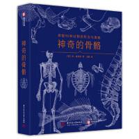 神奇的骨骼探秘96种动物的形态与奥秘 本・普里多,[Ben,Prideaux],王敏 9787568060639 华中科