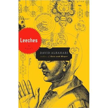 【正版直发】Leeches David Albahari 9780151015023 Houghton Mifflin Harcourt