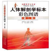 人体解剖学标本彩色图谱(第二版)