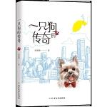 【新版现货】一只狗的传奇 北方文艺出版社