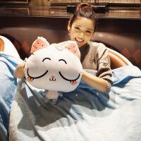 猫咪午睡枕头汽车抱枕被子两用珊瑚绒腰靠枕靠垫空调被毯子三合一