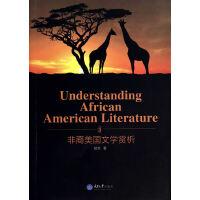 Understanding African American Literature 非裔美国文学赏析