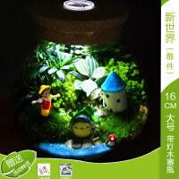 苔藓微景观生态瓶创意盆栽植物迷你盆栽办公桌摆件龙猫生日礼物礼品