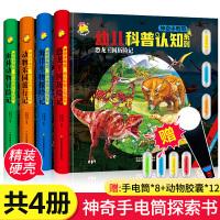 神奇手电筒幼儿科普认知系列4册 儿童视觉大发现动物恐龙科普百科全书 3-5-6-8岁幼儿男孩喜欢的动物知识观察力专注力训