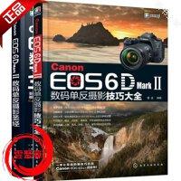 2册 佳能Canon EOS 6D Mark Ⅱ数码单反摄影圣经 佳能6d2数码单反摄影技巧大全 视频教程入门到精通使用