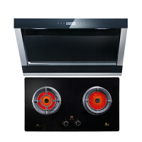 Redsun/红日 EX6002+EH05C抽油烟机燃气灶套餐侧吸壁挂式烟机灶具套装定时烟灶套餐