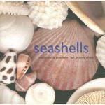 【预订】Seashells