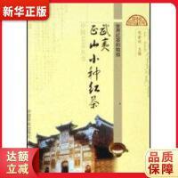 武夷正山小种红茶 邹新球 中国农业出版社9787109108295【新华书店 全新正版书籍】
