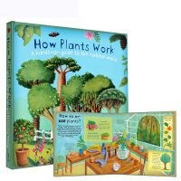 趣味科普立体书:植物如何工作 英文原版 How Plants Work 大开本 立体科普读物 少儿科普读物 翻翻书 立