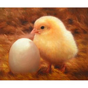 Y117全诗才小鸡