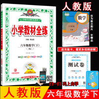 2020新版 小学教材全练 六年级 数学 下册 人教版 6年级 陕西人民教育出版社 小学教材全解配套练习 含测试卷