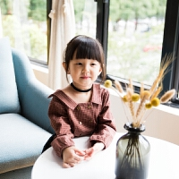 女童衬衫秋季韩版新款长袖咖色纯棉休闲宽松百搭可爱格子衬衣