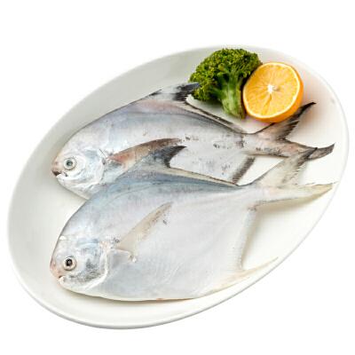 速鲜 舟山新鲜冷冻平鱼200-300g/条 大白鲳银鲳鱼 海鲜水产鲜冻平鱼 骨刺少 无包冰 肉质细嫩