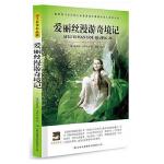 爱丽丝漫游奇境记(大语文丛书)青少年阅读世界经典文学名著小说 中文全译本 学生阅读课外名著