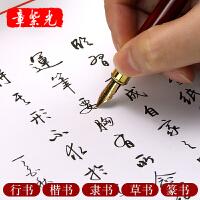 章紫光手写体草书 成人行楷速成钢笔练字帖硬笔临摹篆书隶书字帖