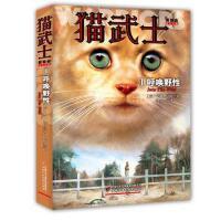 猫武士首部曲(1)――呼唤野性