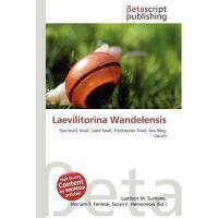 【预订】Laevilitorina Wandelensis